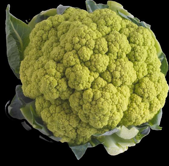 Colored-Cauliflower